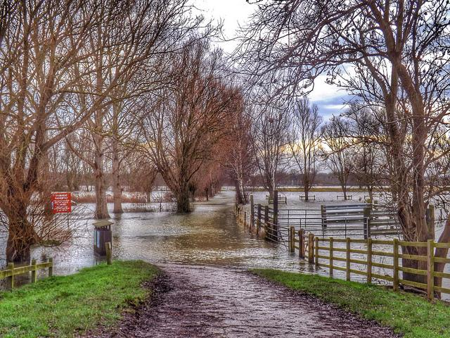 Protect Your Home and Family from Flooding
