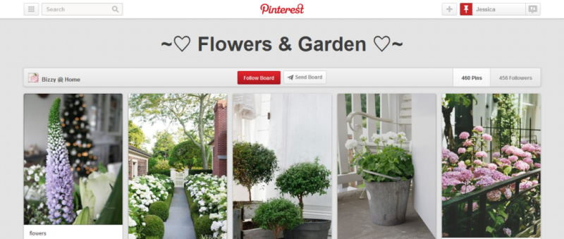 flowers and garden pinterest board