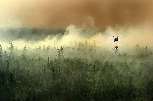 During a Wildfire