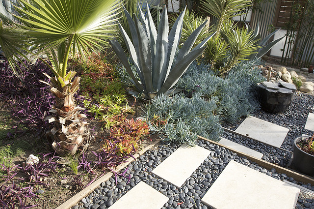 low maintenance backyard landscaping (photo by https://www.flickr.com/photos/jeremylevinedesign/)
